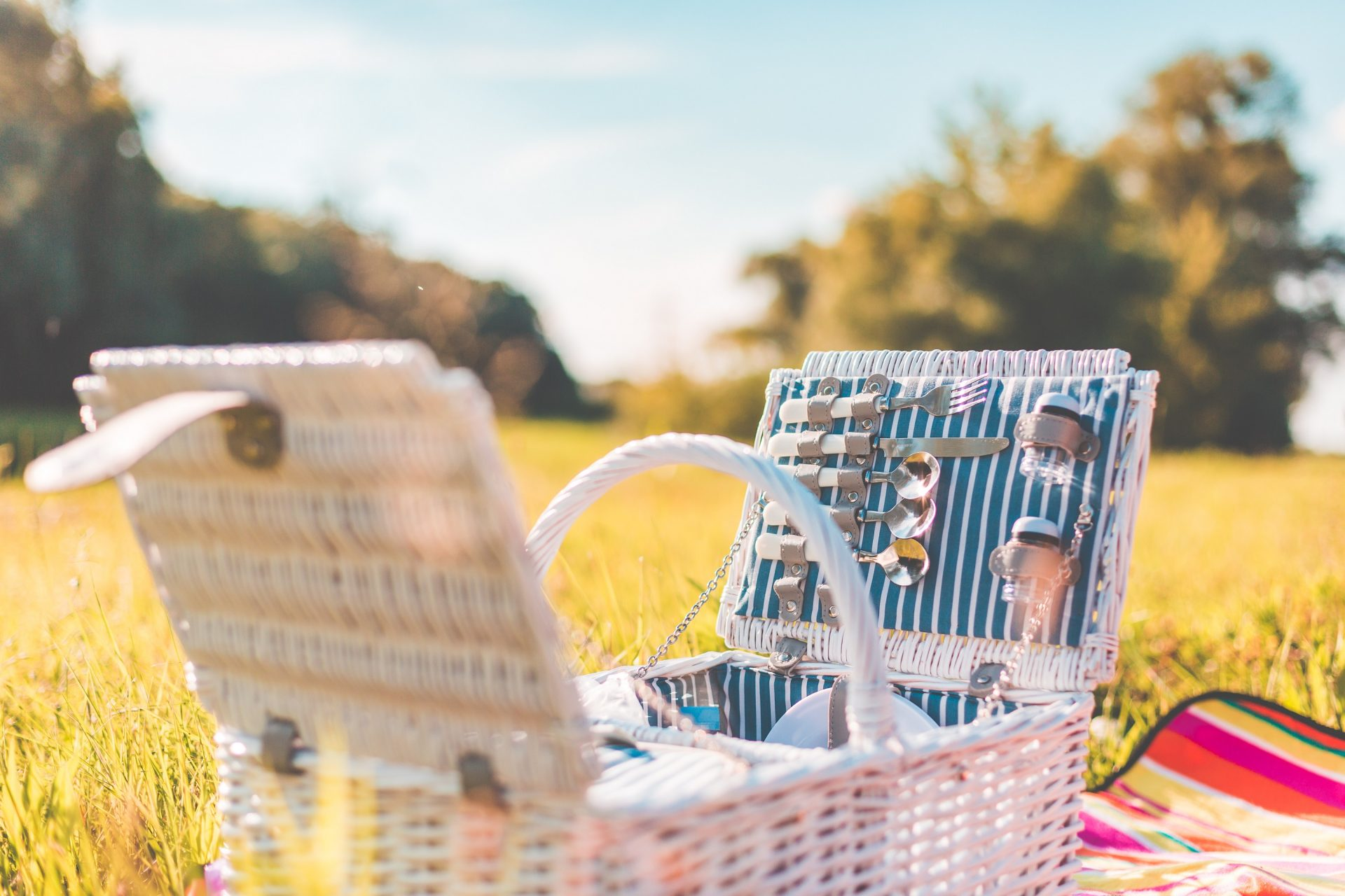Picnic Basket in Meadow