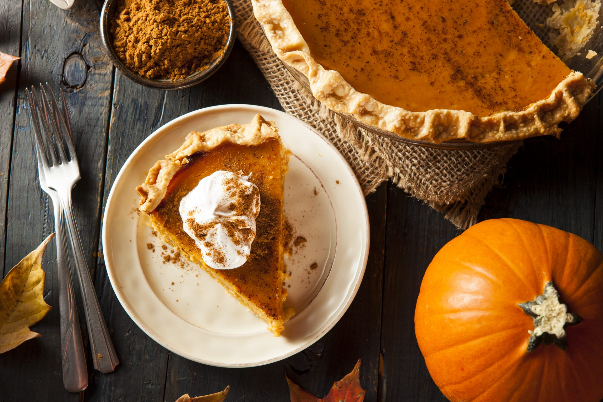 Appreciation of food, family, and friends on Thanksgiving Day