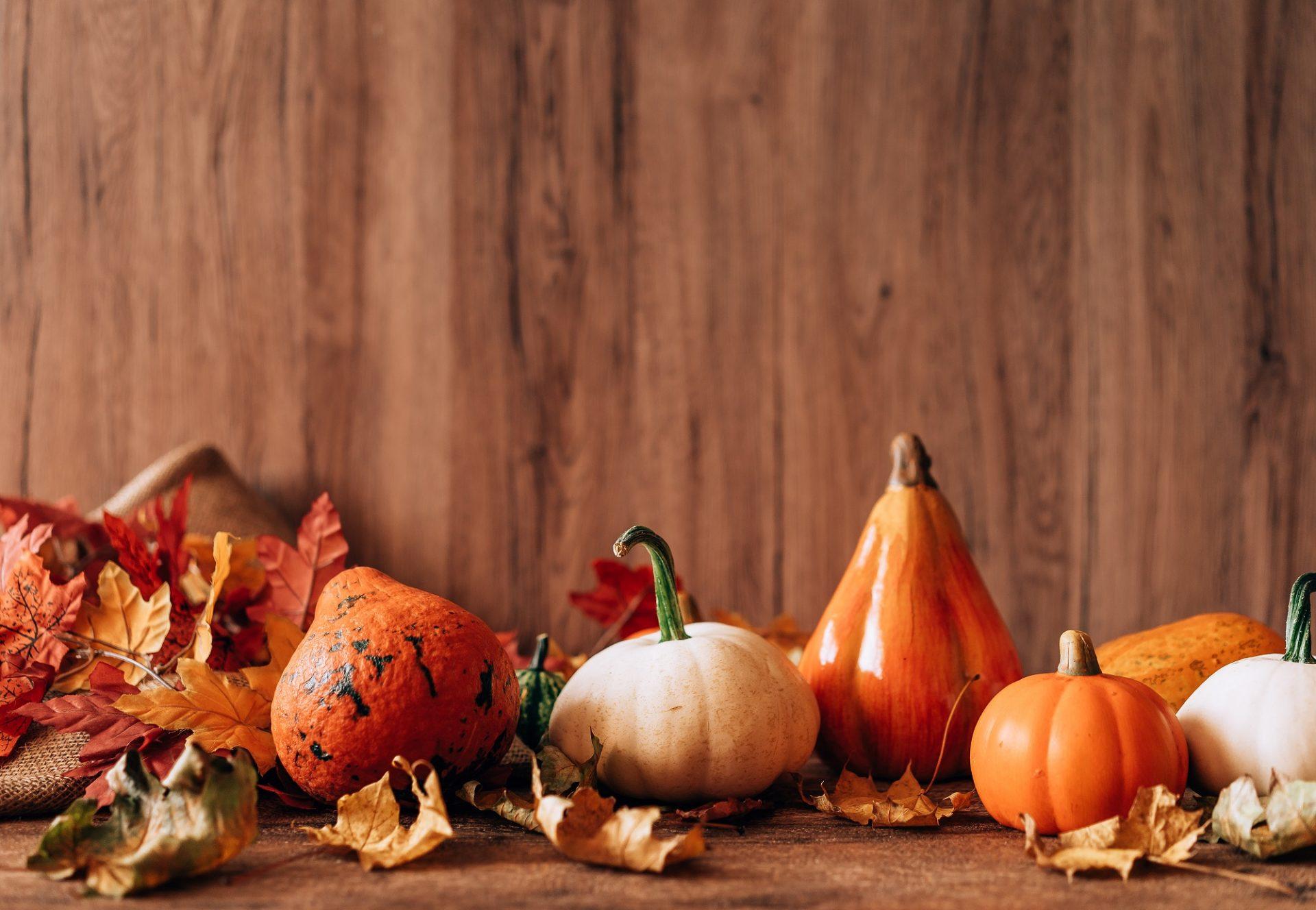 Five Fresh Tips for Navigating Holiday Celebrations